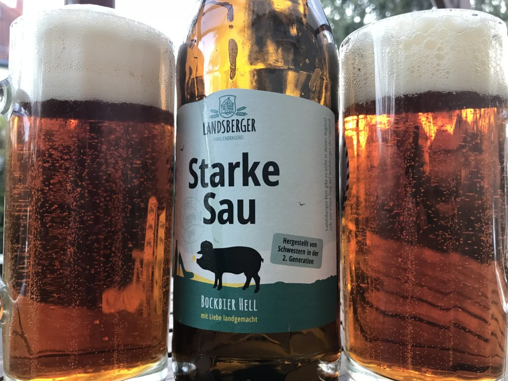 Landsberger Starke Sau Bockbier Hell